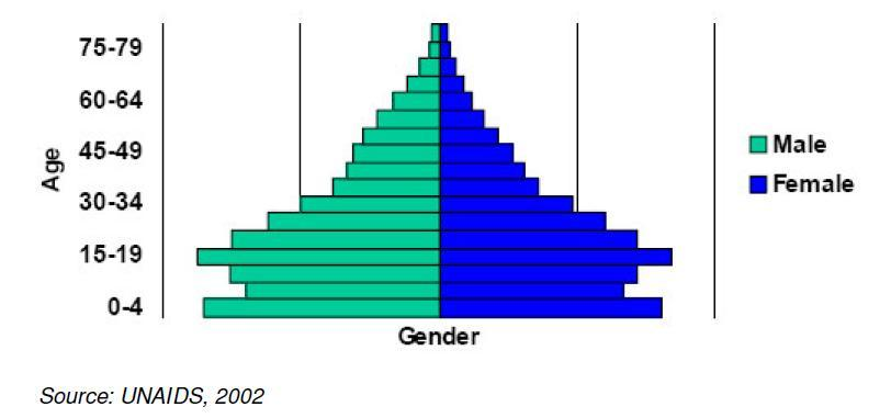 Population pyramid for 2001 5.5. Economic development The Libyan economy is highly dependent on the production of energy resources, such as oil.