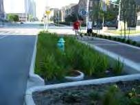 4.5 Bioretention Bioretention areas typically are landscaping features adapted to treat stormwater runoff.