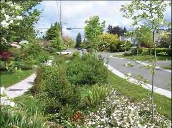 Highlights: Contributes to enhanced air quality, water quality and can assist in directly reducing urban heat island impacts. Can improve property value through attractive landscaping.