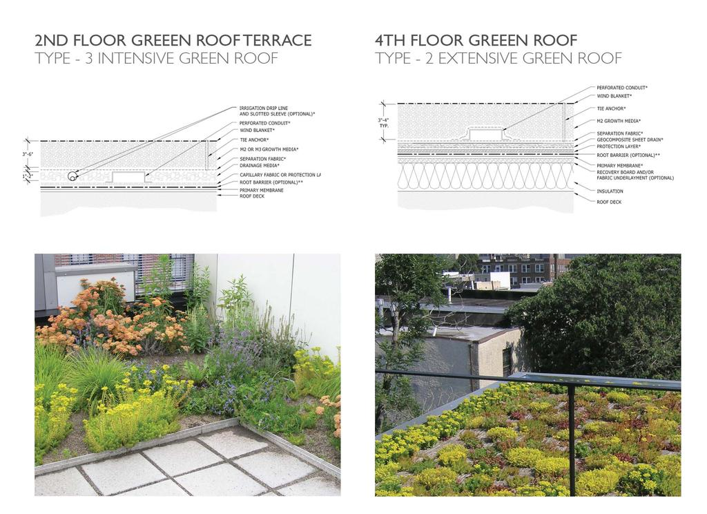 GREEN ROOF SYSTEMS: AVAILABLE