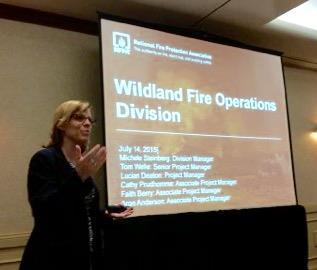 1) INTRODUCTION AND BACKGROUND Fires in the wildland and in wildland urban interface (WUI) communities are a growing problem. The last 15 years contains six of this century s top ten most damaging U.