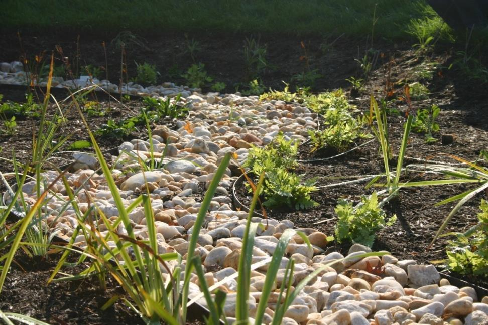 Design Criteria The size of the rain garden is a function of
