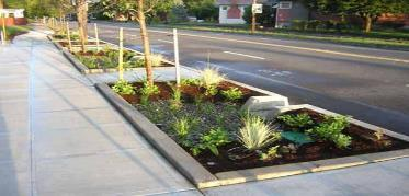 Stormwater Planters Vegetated