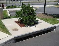 Stormwater Tree Pits/Street Trees Water