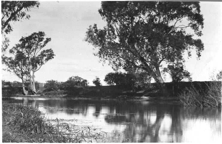 1 Warringal Conservation Society at Banyule Flats The Banyule Wetlands are now recognized as a Wetland Area of State Significance, but in the late 1960s they were threatened with being drained and
