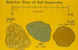Importance of Soil Texture Influences