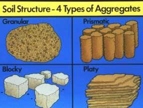 Soil Structure Manner in which soil particles are arranged together Particles in sandy soils may