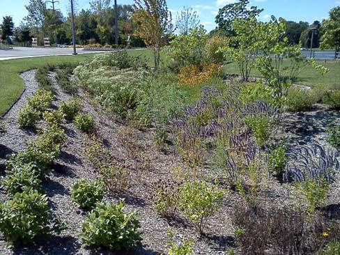 ILLINOIS URBAN MANUAL PRACTICE STANDARD BIORETENTION FACILITY (feet) CODE 800 Source: Jessica Cocroft, Winnebago Soil and Water Conservation District DEFINITION Facility that utilizes a soil media,