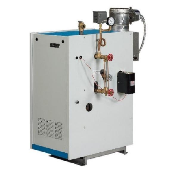 "Hot Water Boilers For purposes of this survey, the term ""boiler"" means a gas- or oil- burning boiler designed to supply hot water for space heating application."