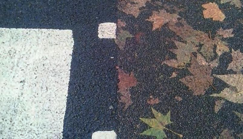 Leaves on the street: one asphalt does not retain the leaves, while the other one retains them. It s like if the leaves were tattooed on the floor.