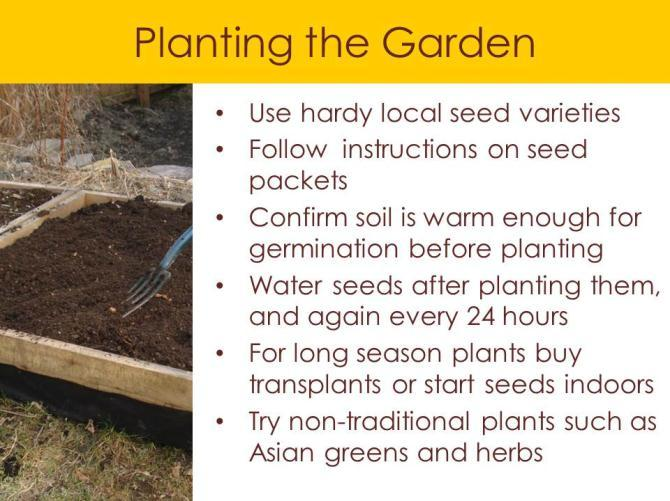 the garden. These will also include guidelines for working with others, sharing space, and treating fellow gardeners with respect.