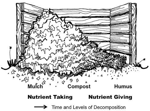 204 California Friendly Maintenance: Your Field Guide Deterring versus Nourishing Mulches For purposes of simplicity, organic mulches can be divided between deterring and nourishing.