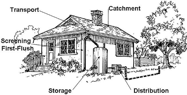 14: Rainwater Capture: Rain Barrels and Cisterns 213 Maintenance The basic steps of rainwater harvesting are capture, transport, screening, storage, and distribution.