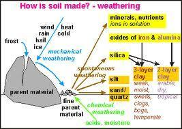 Soil Created by disintegrating rocks & organic matter Components are minerals, organic matter, air & water Influenced