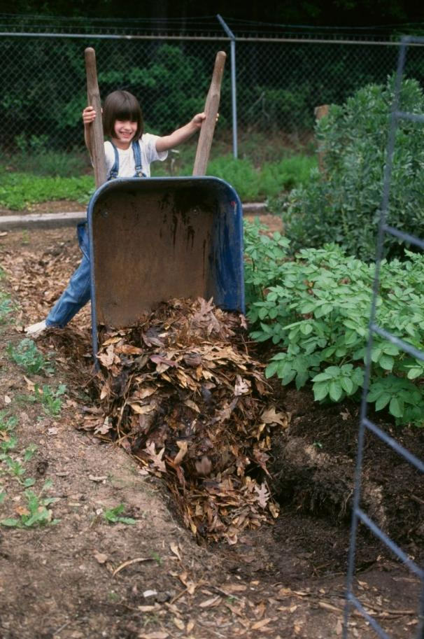 Dumping Leaves In Trench Start by placing leaves in the