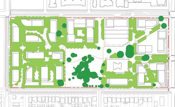 2.1.2 Urban Forestry Management Strategy (continued) Robust street trees spaced closely together Urban Forest Canopy Study With a gross site area of 102,766 m 2, and an existing