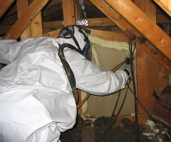 Contractors are mentored Contractor Specialties: Insulation and