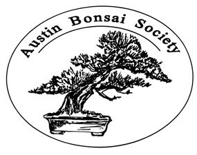 Bonsai Notebook A Publication of the Austin Bonsai Society May 2009 May Programs by Mike Watson It s that time of year again time for our annual Austin Bonsai Show on Saturday, May 16th & Sunday, May