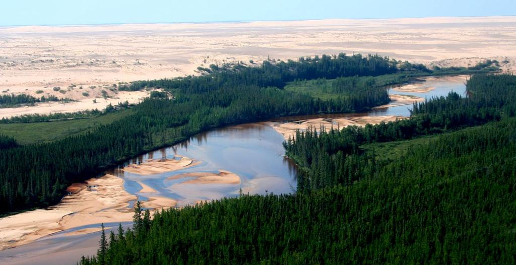 Lake Athabasca. The dunes are home to 10 endemic plants found nowhere else on earth.
