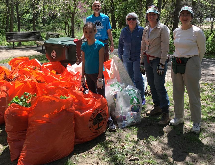 Continued efforts to remove garlic mustard, cutting vines off trees, and picking up trash