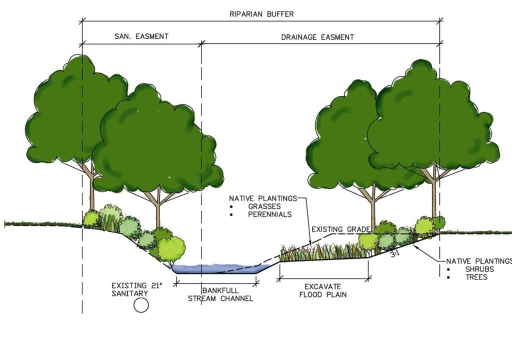 Floodplain Restoration in Narrow Stream Easement Stream Restoration for Flood Relief, and
