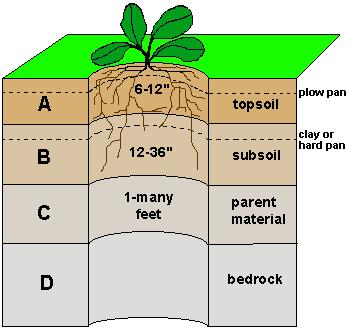 Soils Consists of a series of layers called Topsoil (A horizon) upper most layer Soils