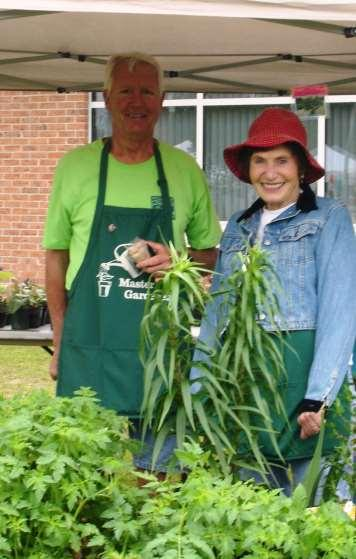 Extension Master Gardener: WHY?
