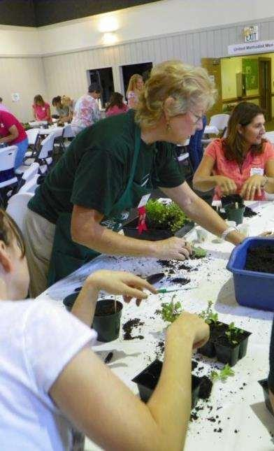Other Extension Gardener Programs Planned for 2016 Culinary herb workshop: