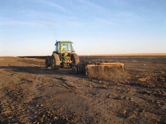 For permanent seeding, soils must be worked to remove soil clods and