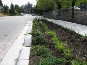 2005); runoff entering from the curb cut was