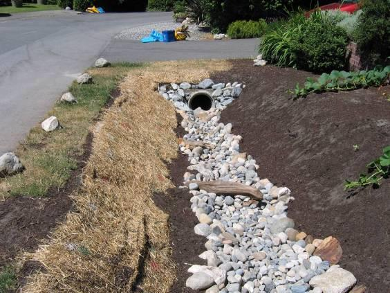 minimize erosion until plants are installed