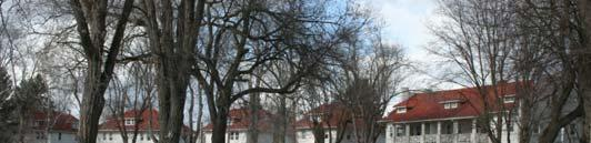 PRESERVE AND MAINTAIN THE HISTORIC DOUBLE ROW OF TREES (USE TREES WITH SIMILAR SIZE AND