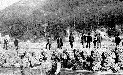 1894 1994 Figure 1: First project of Maccaferri using Factory made gabions - River Reno Gabions: Modern Gabions are rectangular crates (Figure