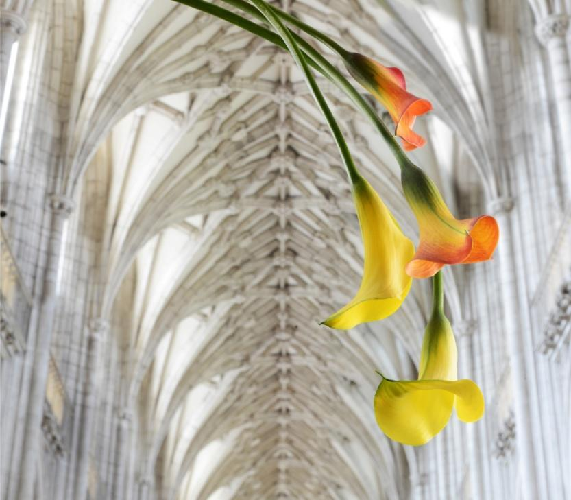 HEAVENLY FLOWERS AT WINCHESTER CATHEDRAL 24 28 JUNE 2015 Expect a flower extravaganza like no other.