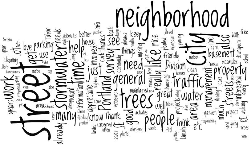 Figure 5. Word cloud responses to question, What keeps you from making a positive impact on your neighborhood?