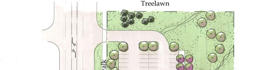 zone or landscape buffer yard that includes densely-planted evergreen and deciduous trees