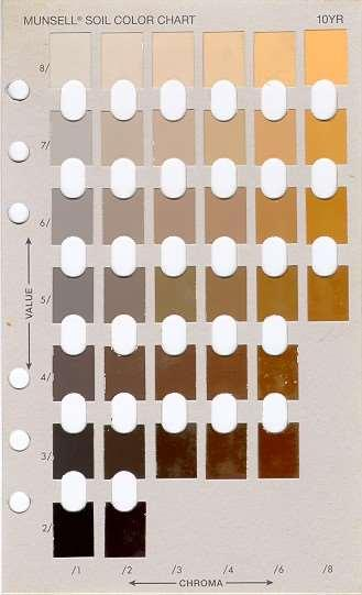 Describing Soil Color The Munsell color book is used to document color by means of a standard notation.