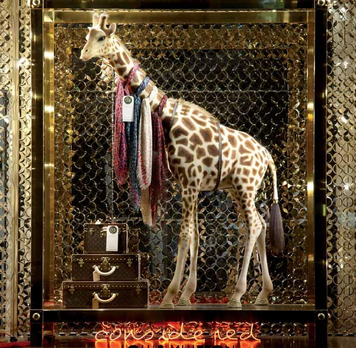 Windows 91 A life-size and realistic giraffe fi lls an entire window at Louis Vuitton, London.